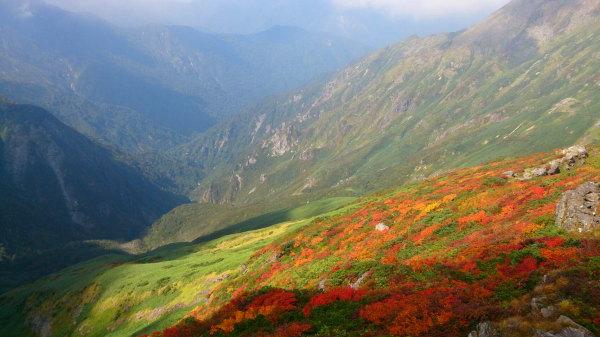 2017年谷川岳紅葉