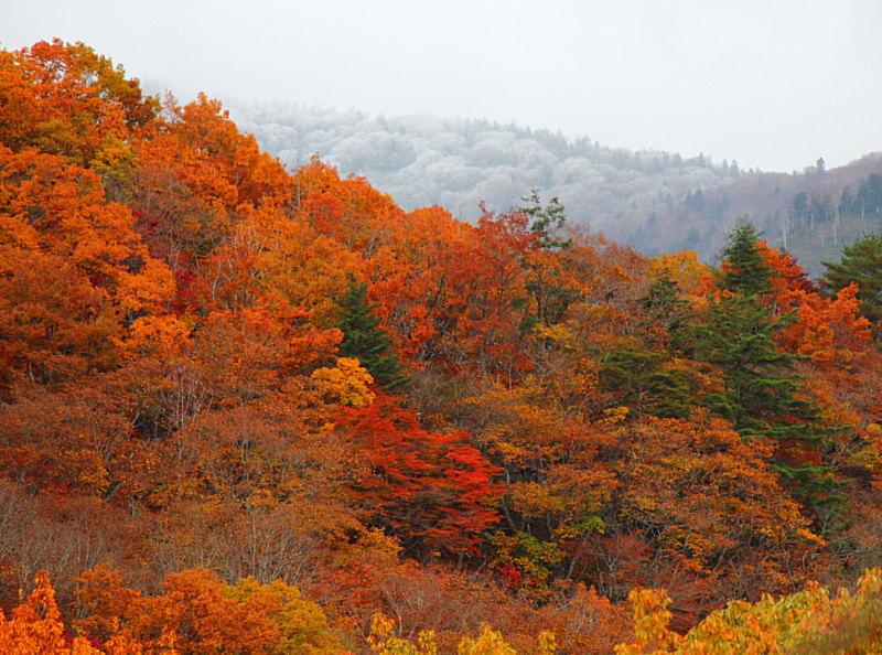 笠ヶ岳の初冠雪