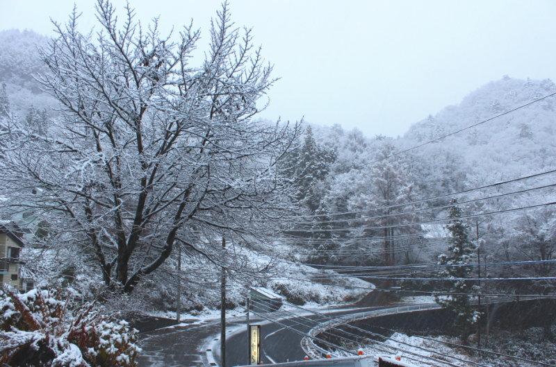 雪景色の源泉掛け流し貸切露天風呂