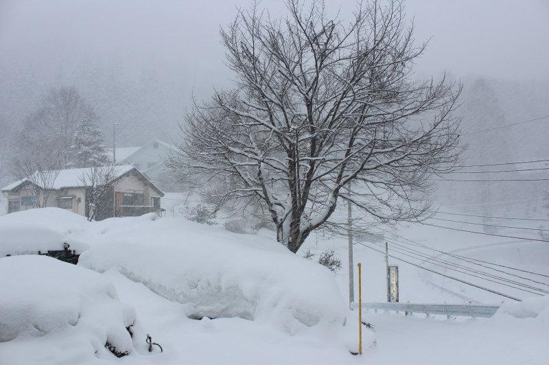 雪&源泉掛け流し貸切露天風呂