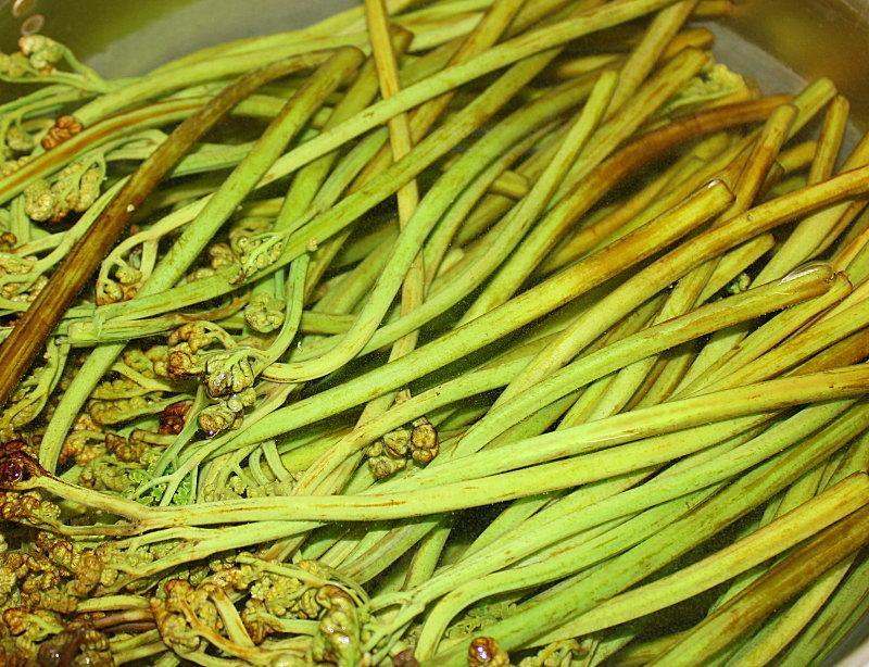 山菜料理、わらび