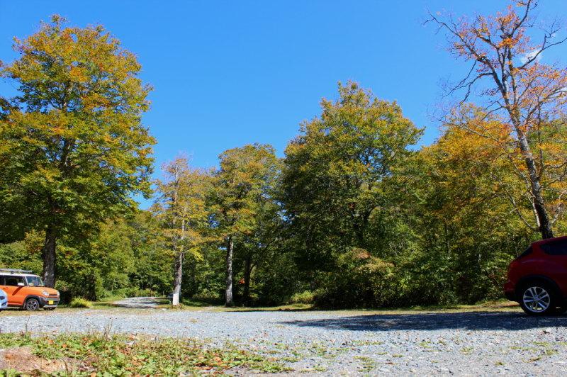奥利根水源の森紅葉