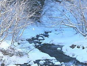 宿の下を流れる木ノ根沢の雪景色